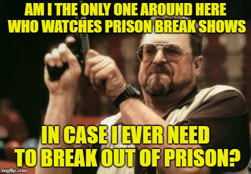 Educational  | AM I THE ONLY ONE AROUND HERE WHO WATCHES PRISON BREAK SHOWS IN CASE I EVER NEED TO BREAK OUT OF PRISON? | image tagged in memes,am i the only one around here,prisoner,convict | made w/ Imgflip meme maker