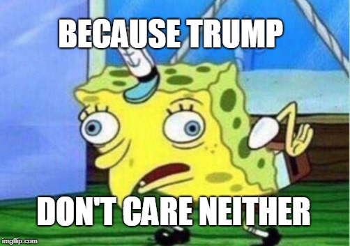 Mocking Spongebob Meme | BECAUSE TRUMP DON'T CARE NEITHER | image tagged in memes,mocking spongebob | made w/ Imgflip meme maker
