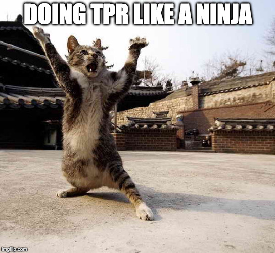 DOING TPR LIKE A NINJA | image tagged in ninja cat in stance | made w/ Imgflip meme maker