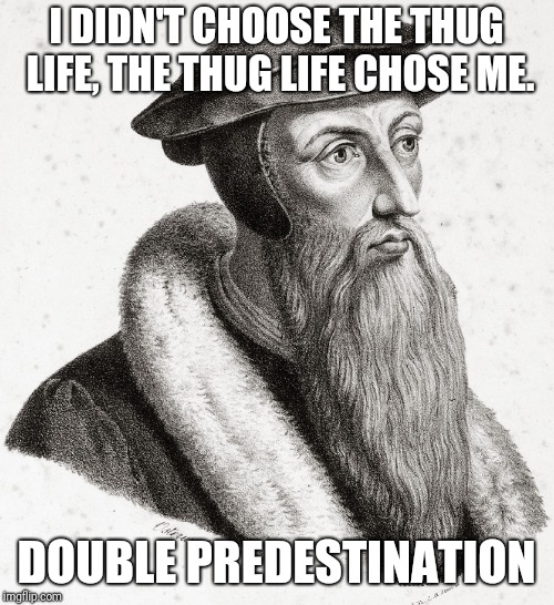 I DIDN'T CHOOSE THE THUG LIFE, THE THUG LIFE CHOSE ME. DOUBLE PREDESTINATION | image tagged in thug life,calvinism,doublepredestination,jeancalvin | made w/ Imgflip meme maker