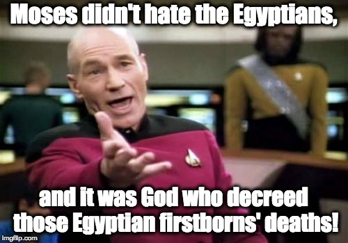 Picard Wtf Meme | Moses didn't hate the Egyptians, and it was God who decreed those Egyptian firstborns' deaths! | image tagged in memes,picard wtf | made w/ Imgflip meme maker