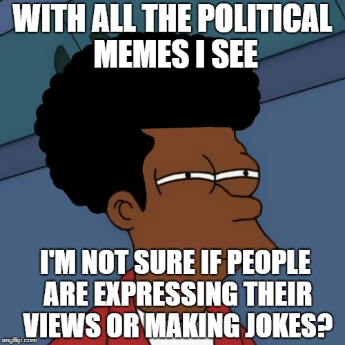 It's Not just Politically Undivided it's Politically Undecided | WITH ALL THE POLITICAL MEMES I SEE I'M NOT SURE IF PEOPLE ARE EXPRESSING THEIR VIEWS OR MAKING JOKES? | image tagged in black fry,political memes | made w/ Imgflip meme maker
