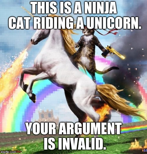 Welcome To The Internets Meme | THIS IS A NINJA CAT RIDING A UNICORN. YOUR ARGUMENT IS INVALID. | image tagged in memes,welcome to the internets | made w/ Imgflip meme maker