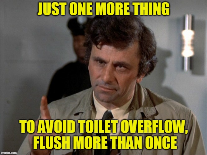 And Spare Yourself the Humiliation | JUST ONE MORE THING TO AVOID TOILET OVERFLOW, FLUSH MORE THAN ONCE | image tagged in columbo,toilet humor | made w/ Imgflip meme maker