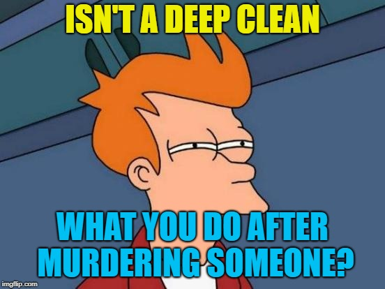 Futurama Fry Meme | ISN'T A DEEP CLEAN WHAT YOU DO AFTER MURDERING SOMEONE? | image tagged in memes,futurama fry | made w/ Imgflip meme maker