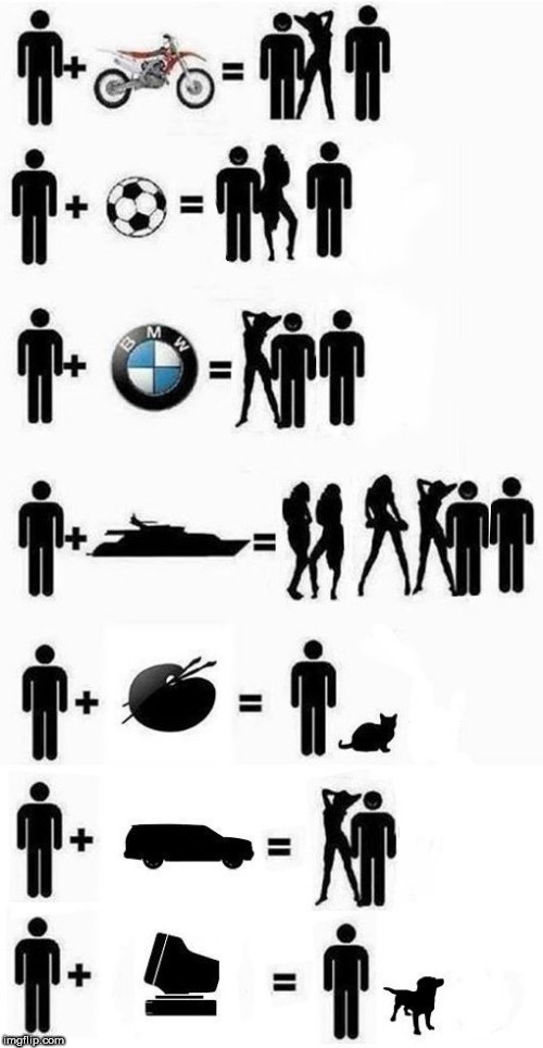 whatever | image tagged in bmw,computer,ford,cat,woman,man | made w/ Imgflip meme maker