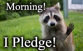 Morning! I Pledge! | image tagged in 1 | made w/ Imgflip meme maker