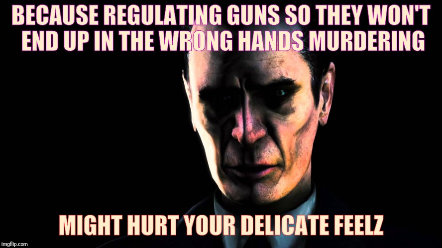 BECAUSE REGULATING GUNS SO THEY WON'T END UP IN THE WRONG HANDS MURDERING MIGHT HURT YOUR DELICATE FEELZ | image tagged in creep,stern faced,vagabondsouffle template | made w/ Imgflip meme maker