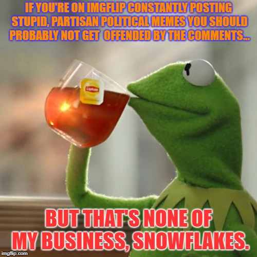 RWNJs | IF YOU'RE ON IMGFLIP CONSTANTLY POSTING STUPID, PARTISAN POLITICAL MEMES YOU SHOULD PROBABLY NOT GET  OFFENDED BY THE COMMENTS... BUT THAT'S | image tagged in memes,but thats none of my business,kermit the frog,politics,political meme | made w/ Imgflip meme maker