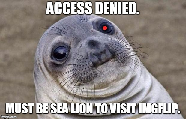 Awkward Moment -  Red Team Cyborg Anthropologist Sea Lion | ACCESS DENIED. MUST BE SEA LION TO VISIT IMGFLIP. | image tagged in awkward moment -  red team cyborg anthropologist sea lion | made w/ Imgflip meme maker