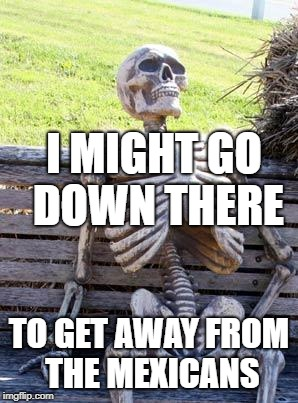 Waiting Skeleton Meme | I MIGHT GO DOWN THERE TO GET AWAY FROM THE MEXICANS | image tagged in memes,waiting skeleton | made w/ Imgflip meme maker