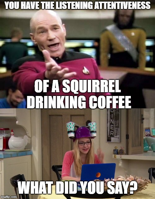 Squirrel Drinking Coffee | YOU HAVE THE LISTENING ATTENTIVENESS OF A SQUIRREL DRINKING COFFEE WHAT DID YOU SAY? | image tagged in coffee,not listening,star trek | made w/ Imgflip meme maker