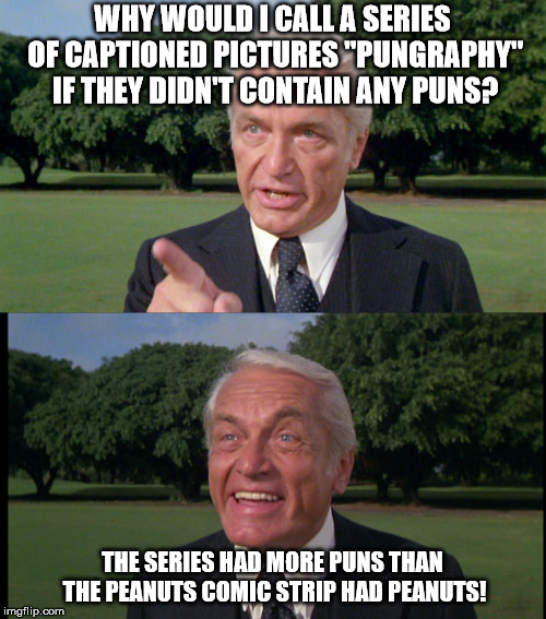 "WHY WOULD I CALL A SERIES OF CAPTIONED PICTURES ""PUNGRAPHY"" IF THEY DIDN'T CONTAIN ANY PUNS? THE SERIES HAD MORE PUNS THAN THE PEANUTS COMIC 