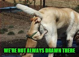 WE'RE NOT ALWAYS DRAWN THERE | made w/ Imgflip meme maker