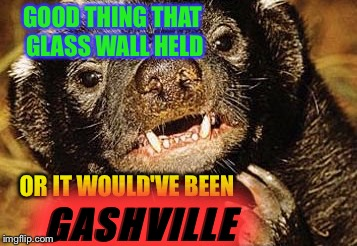 GOOD THING THAT GLASS WALL HELD OR IT WOULD'VE BEEN GASHVILLE | made w/ Imgflip meme maker