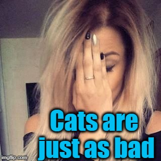 Cats are just as bad | image tagged in face palm | made w/ Imgflip meme maker