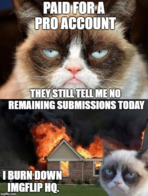 I want a year's subscription on the house, now. | PAID FOR A PRO ACCOUNT THEY STILL TELL ME NO REMAINING SUBMISSIONS TODAY I BURN DOWN IMGFLIP HQ. | image tagged in burn kitty,grumpy cat not amused,imgflip,meanwhile on imgflip,imgflip users | made w/ Imgflip meme maker