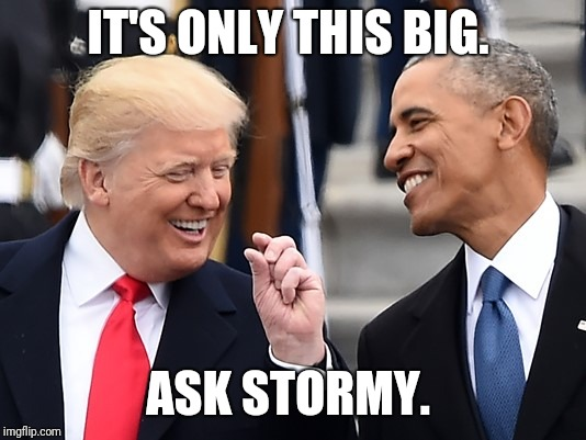 IT'S ONLY THIS BIG. ASK STORMY. | image tagged in trump obama | made w/ Imgflip meme maker