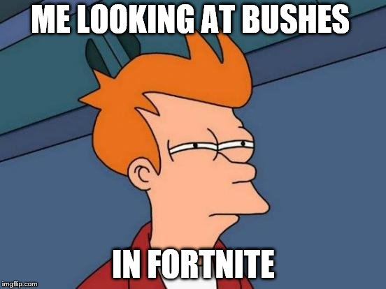 Futurama Fry Meme | ME LOOKING AT BUSHES IN FORTNITE | image tagged in memes,futurama fry | made w/ Imgflip meme maker