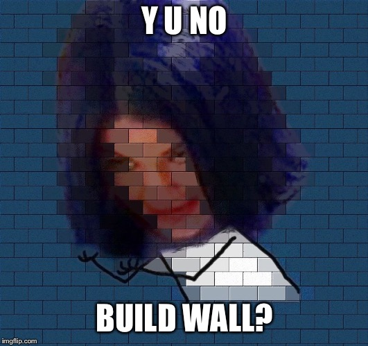 Another Mima In The Wall | Y U NO BUILD WALL? | image tagged in another mima in the wall | made w/ Imgflip meme maker