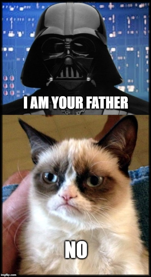 I AM YOUR FATHER NO | image tagged in fathers day,star wars,darth vader,grumpy cat,i am your father,no | made w/ Imgflip meme maker