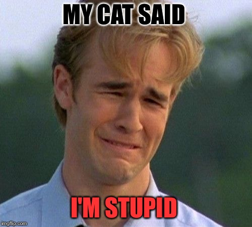 MY CAT SAID I'M STUPID | made w/ Imgflip meme maker