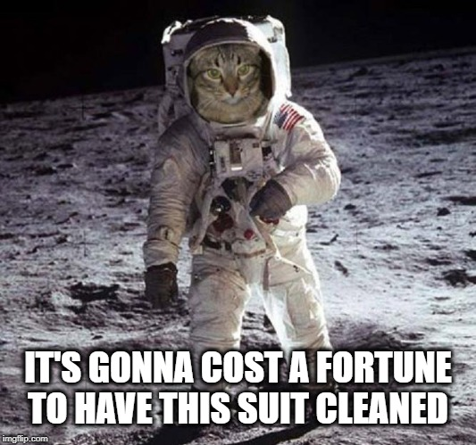 IT'S GONNA COST A FORTUNE TO HAVE THIS SUIT CLEANED | image tagged in cat,cat meme,moon,stanley kubrick,space,spaceballs | made w/ Imgflip meme maker