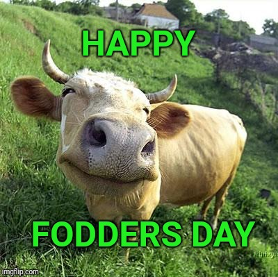 Happy Dad's day to all the Dads | HAPPY FODDERS DAY | image tagged in cow,fathers day | made w/ Imgflip meme maker