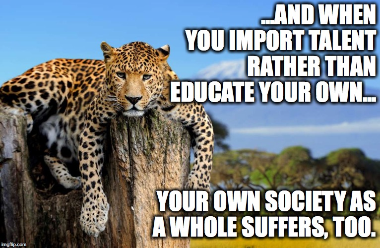 Most Interesting Leopard In The World | ...AND WHEN YOU IMPORT TALENT RATHER THAN EDUCATE YOUR OWN... YOUR OWN SOCIETY AS A WHOLE SUFFERS, TOO. | image tagged in most interesting leopard in the world | made w/ Imgflip meme maker