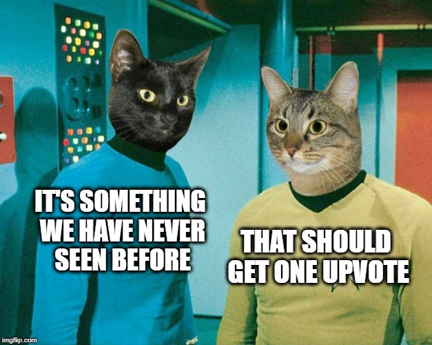 One Upvote | IT'S SOMETHING WE HAVE NEVER SEEN BEFORE THAT SHOULD GET ONE UPVOTE | image tagged in one upvote,cats,cat meme,star trek,meanwhile on imgflip,page 9 | made w/ Imgflip meme maker