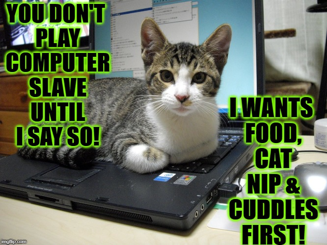 YOU DON'T PLAY COMPUTER SLAVE UNTIL I SAY SO! I WANTS FOOD, CAT NIP & CUDDLES FIRST! | image tagged in tyrannical jerk | made w/ Imgflip meme maker