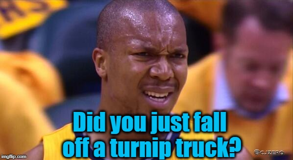 huh | Did you just fall off a turnip truck? | image tagged in huh | made w/ Imgflip meme maker