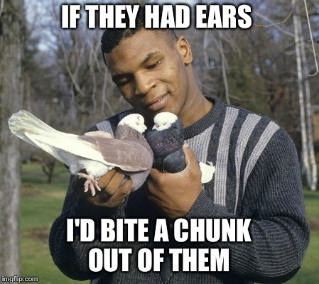 IF THEY HAD EARS I'D BITE A CHUNK OUT OF THEM | image tagged in mike tyson | made w/ Imgflip meme maker