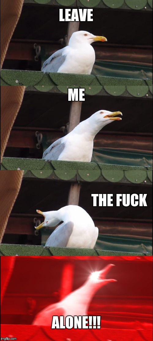 Me when I want to be left alone | LEAVE ME THE F**K ALONE!!! | image tagged in memes,inhaling seagull | made w/ Imgflip meme maker