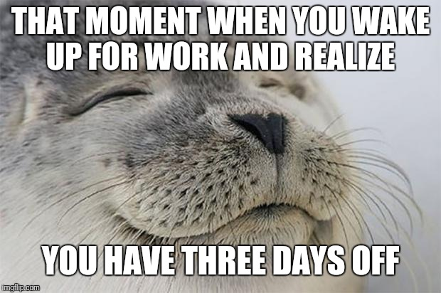 Satisfied Seal Meme | THAT MOMENT WHEN YOU WAKE UP FOR WORK AND REALIZE YOU HAVE THREE DAYS OFF | image tagged in memes,satisfied seal | made w/ Imgflip meme maker
