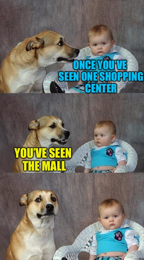 Dad Joke Dog | ONCE YOU'VE SEEN ONE SHOPPING CENTER YOU'VE SEEN THE MALL | image tagged in memes,dad joke dog | made w/ Imgflip meme maker