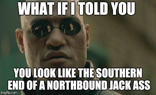 Matrix Morpheus Meme | WHAT IF I TOLD YOU YOU LOOK LIKE THE SOUTHERN END OF A NORTHBOUND JACK ASS | image tagged in memes,matrix morpheus | made w/ Imgflip meme maker
