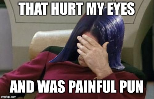 Mima facepalm | THAT HURT MY EYES AND WAS PAINFUL PUN | image tagged in mima facepalm | made w/ Imgflip meme maker