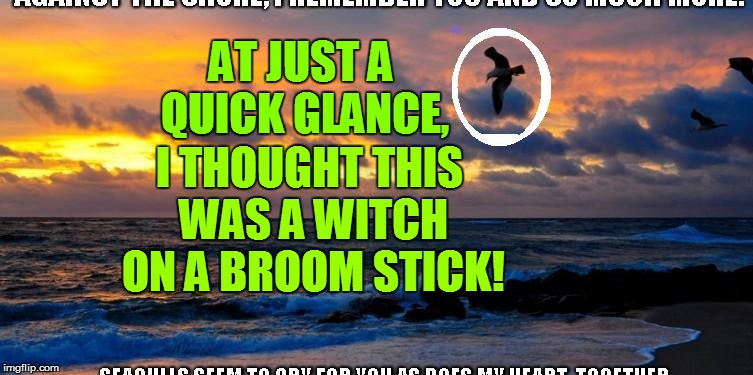 AT JUST A QUICK GLANCE, I THOUGHT THIS WAS A WITCH ON A BROOM STICK! | made w/ Imgflip meme maker