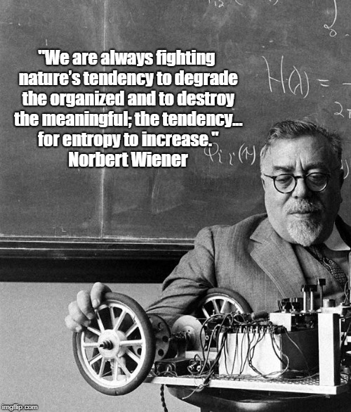 """""""We are always fighting nature's tendency to degrade the organized and to destroy the meaningful; the tendency... for entropy to increase.""""  