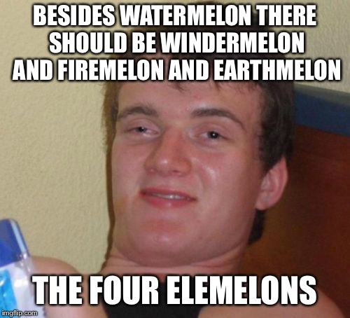 10 Guy | BESIDES WATERMELON THERE SHOULD BE WINDERMELON AND FIREMELON AND EARTHMELON THE FOUR ELEMELONS | image tagged in memes,10 guy | made w/ Imgflip meme maker