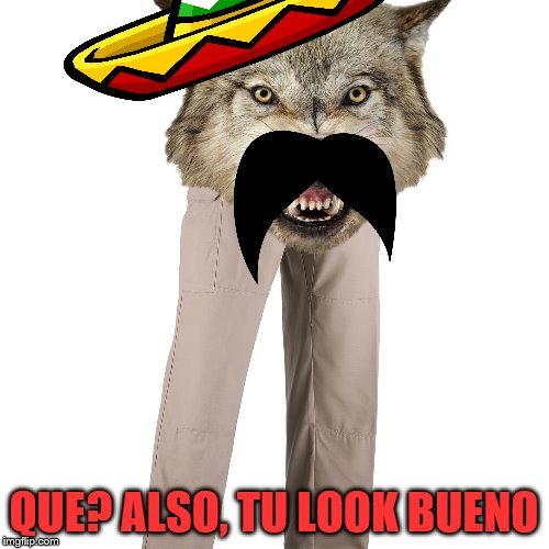 QUE? ALSO, TU LOOK BUENO | made w/ Imgflip meme maker