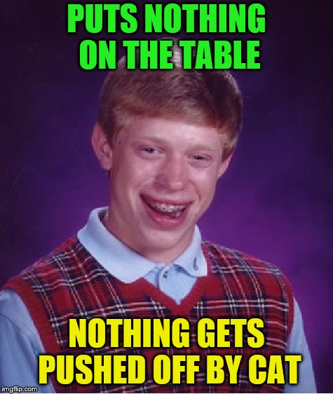 Bad Luck Brian Meme | PUTS NOTHING ON THE TABLE NOTHING GETS PUSHED OFF BY CAT | image tagged in memes,bad luck brian | made w/ Imgflip meme maker