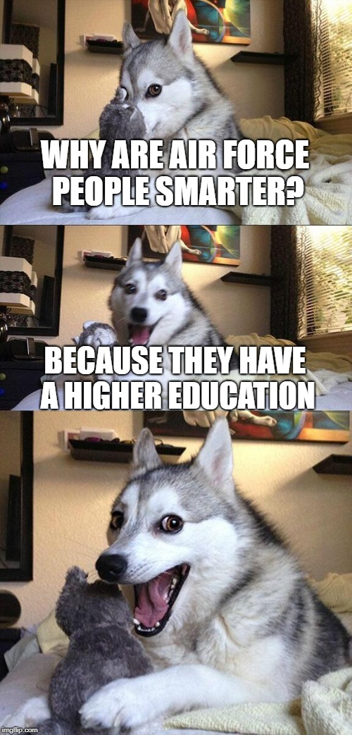 Go Air Force! | WHY ARE AIR FORCE PEOPLE SMARTER? BECAUSE THEY HAVE A HIGHER EDUCATION | image tagged in memes,bad pun dog,air force | made w/ Imgflip meme maker