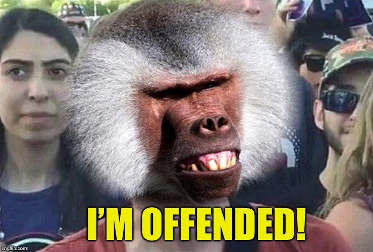 I'M OFFENDED! | made w/ Imgflip meme maker