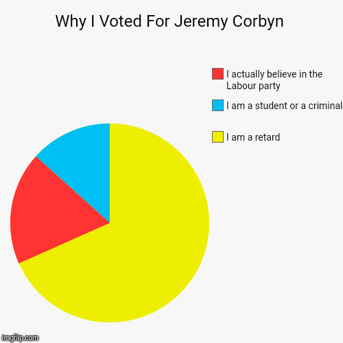 Why I Voted For Jeremy Corbyn | I am a retard, I am a student or a criminal , I actually believe in the Labour party | image tagged in funny,pie charts | made w/ Imgflip pie chart maker