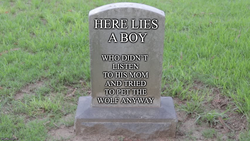 Blank Tombstone 001 | HERE LIES A BOY WHO DIDN'T LISTEN TO HIS MOM AND TRIED TO PET THE WOLF ANYWAY | image tagged in blank tombstone 001 | made w/ Imgflip meme maker