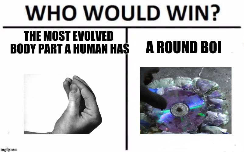 Who Would Win? Meme | THE MOST EVOLVED BODY PART A HUMAN HAS A ROUND BOI | image tagged in memes,who would win | made w/ Imgflip meme maker