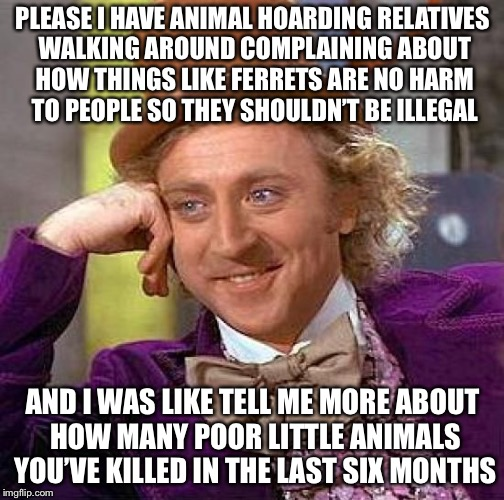 Creepy Condescending Wonka Meme | PLEASE I HAVE ANIMAL HOARDING RELATIVES WALKING AROUND COMPLAINING ABOUT HOW THINGS LIKE FERRETS ARE NO HARM TO PEOPLE SO THEY SHOULDN'T BE  | image tagged in memes,creepy condescending wonka | made w/ Imgflip meme maker
