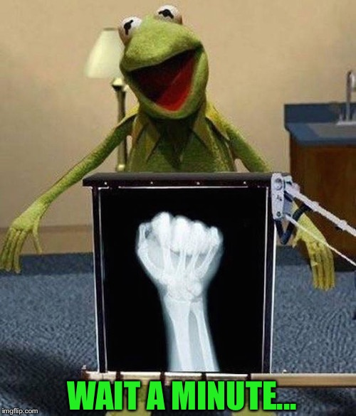 So many jokes... | WAIT A MINUTE... | image tagged in funny memes,frog week,kermit the frog,muppets | made w/ Imgflip meme maker